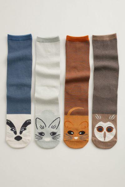 Sailor Socks Box O'4 - Cornish Wildlife Multi